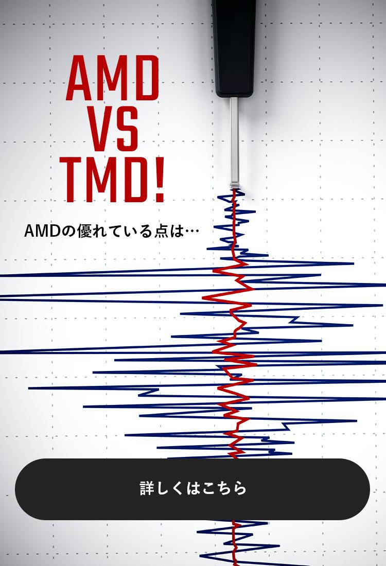 AMD VS TMD!